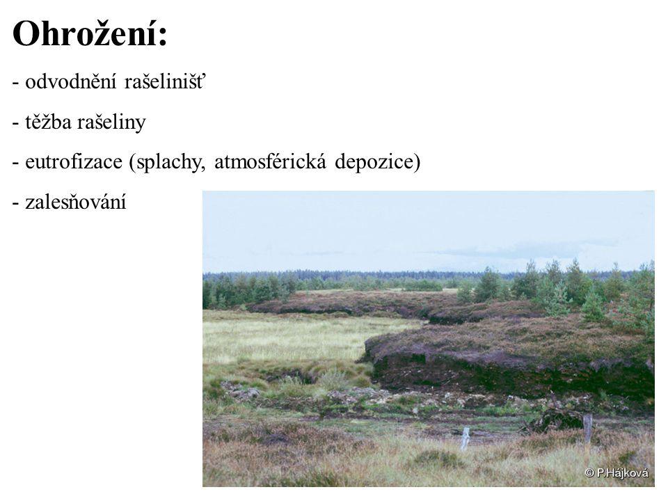 Ohrožení: - odvodnění rašelinišť - těžba rašeliny