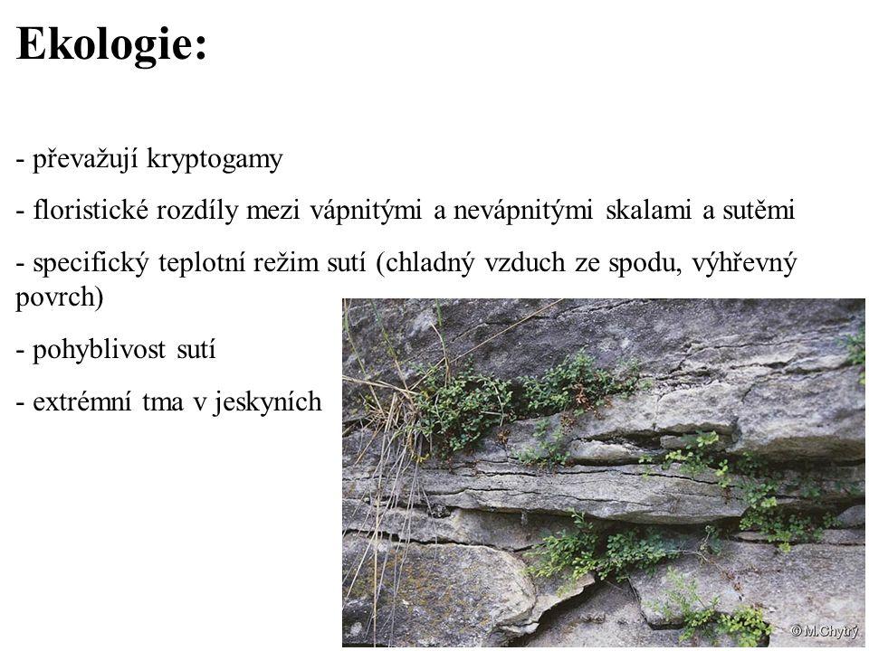 Ekologie: - převažují kryptogamy
