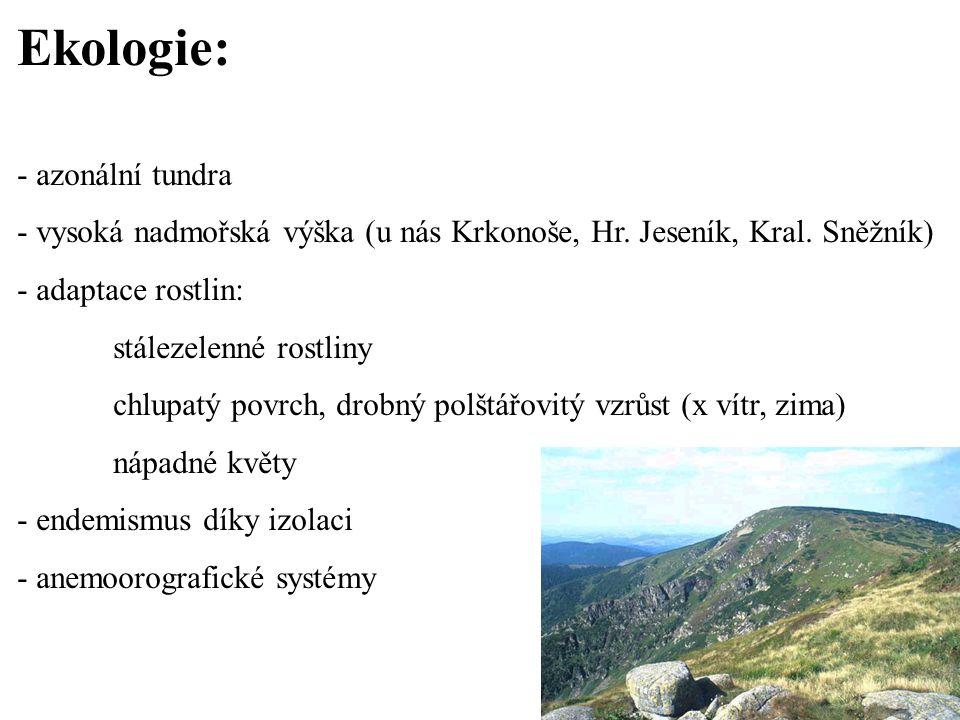 Ekologie: - azonální tundra