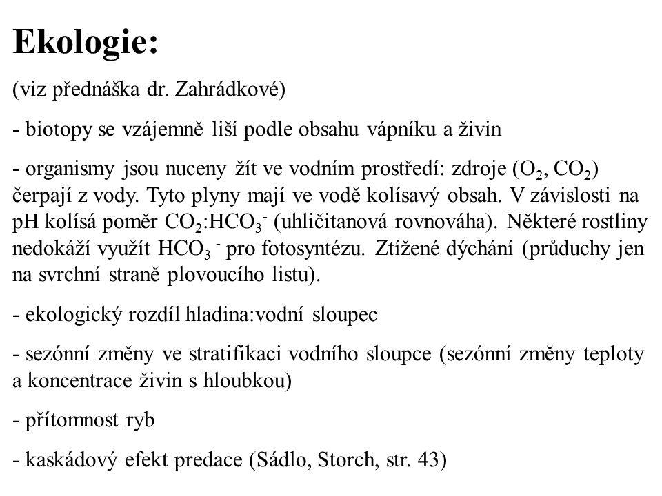 Ekologie: (viz přednáška dr. Zahrádkové)