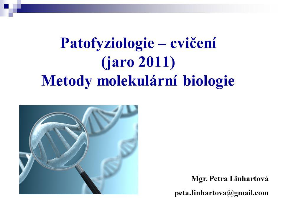 Patofyziologie – cvičení (jaro 2011) Metody molekulární biologie