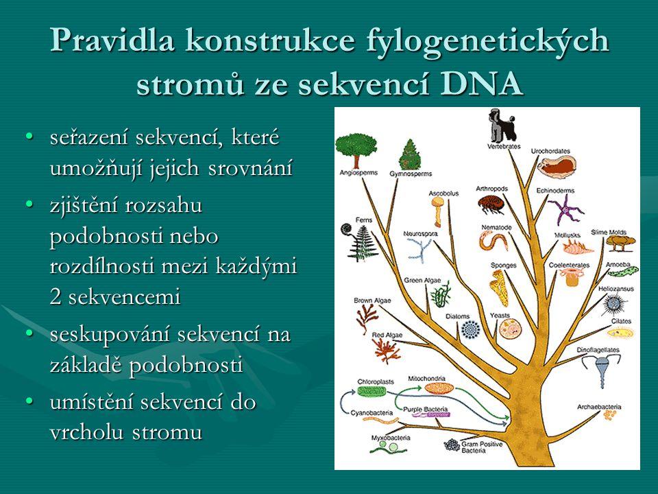 Pravidla konstrukce fylogenetických stromů ze sekvencí DNA