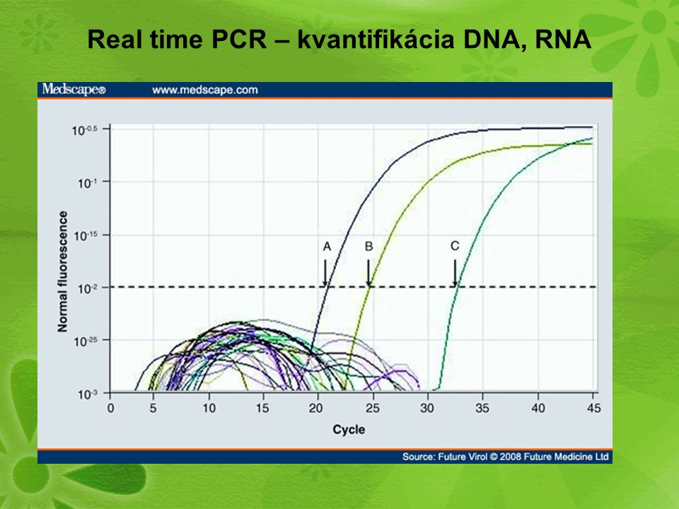 Real time PCR – kvantifikácia DNA, RNA
