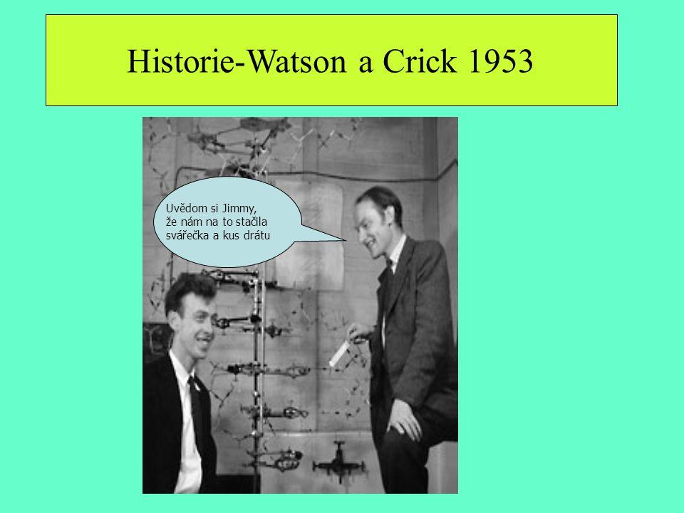 Historie-Watson a Crick 1953