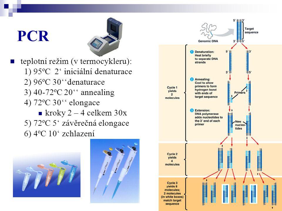 PCR teplotní režim (v termocykleru): 1) 95ºC 2' iniciální denaturace