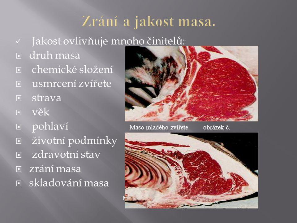 Zrání a jakost masa. Jakost ovlivňuje mnoho činitelů: druh masa