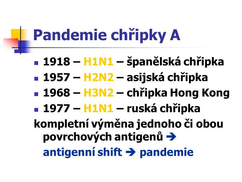 Pandemie chřipky A 1918 – H1N1 – španělská chřipka