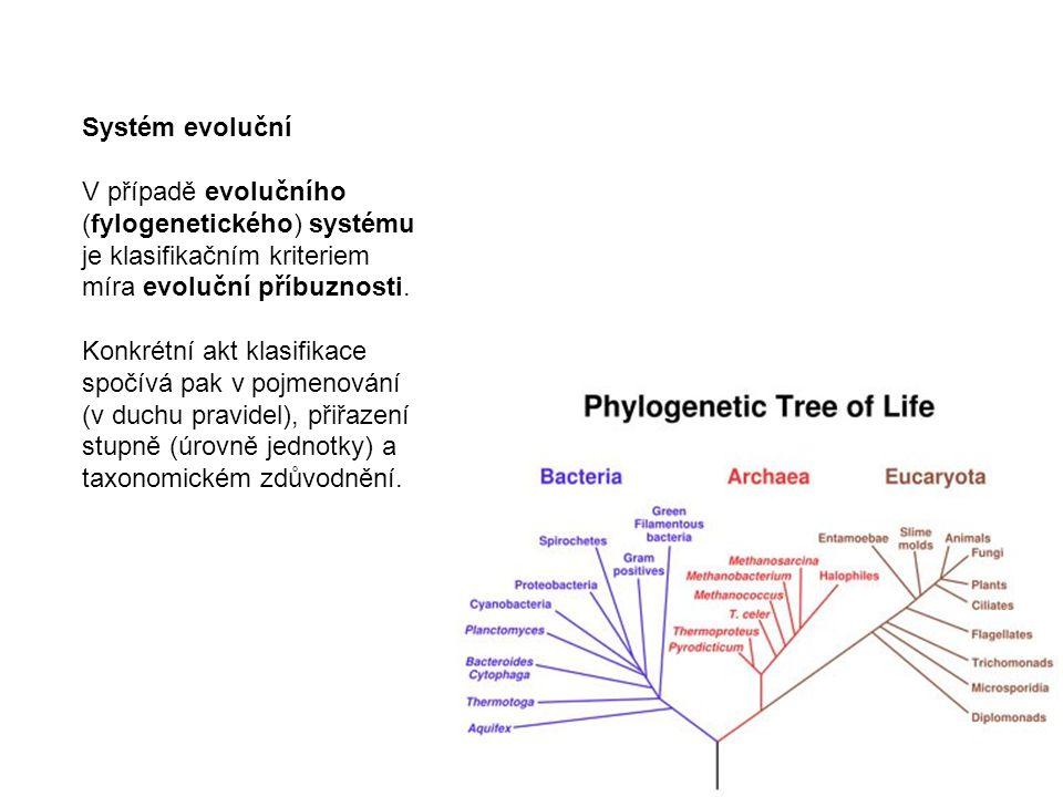 Systém evoluční V případě evolučního. (fylogenetického) systému. je klasifikačním kriteriem. míra evoluční příbuznosti.