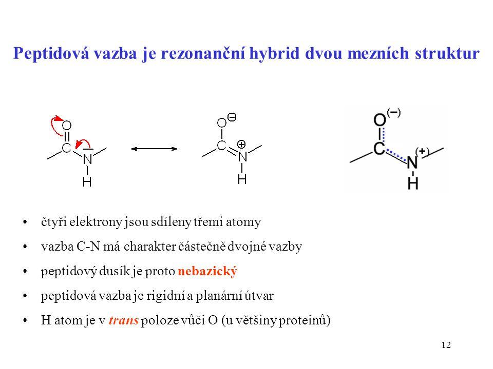 Peptidová vazba je rezonanční hybrid dvou mezních struktur