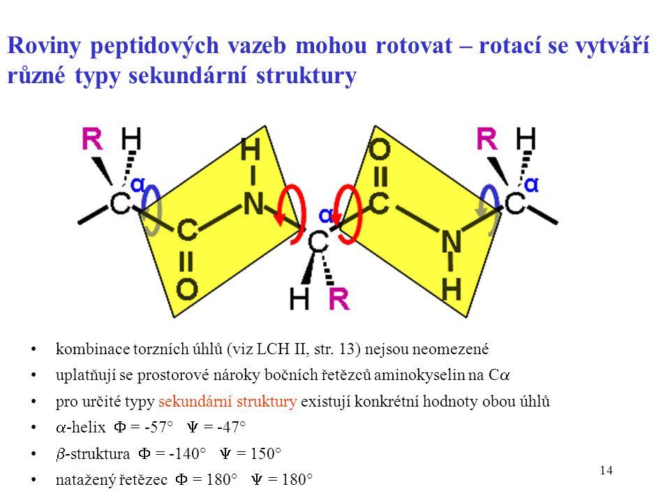 Roviny peptidových vazeb mohou rotovat – rotací se vytváří různé typy sekundární struktury