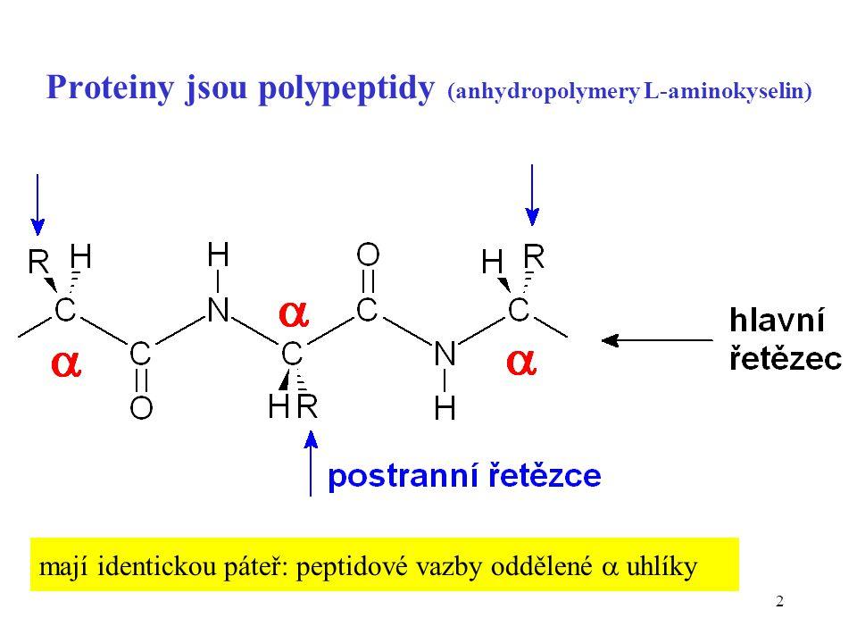 Proteiny jsou polypeptidy (anhydropolymery L-aminokyselin)