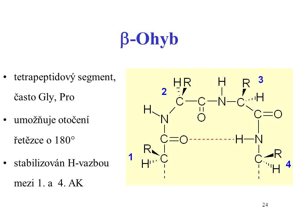 -Ohyb tetrapeptidový segment, často Gly, Pro