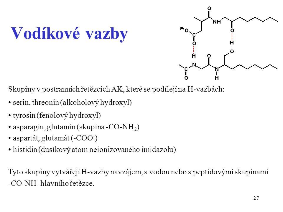 Vodíkové vazby Skupiny v postranních řetězcích AK, které se podílejí na H-vazbách: serin, threonin (alkoholový hydroxyl)