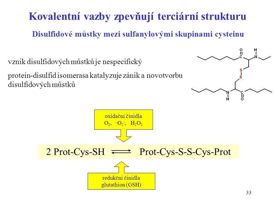 Kovalentní vazby zpevňují terciární strukturu