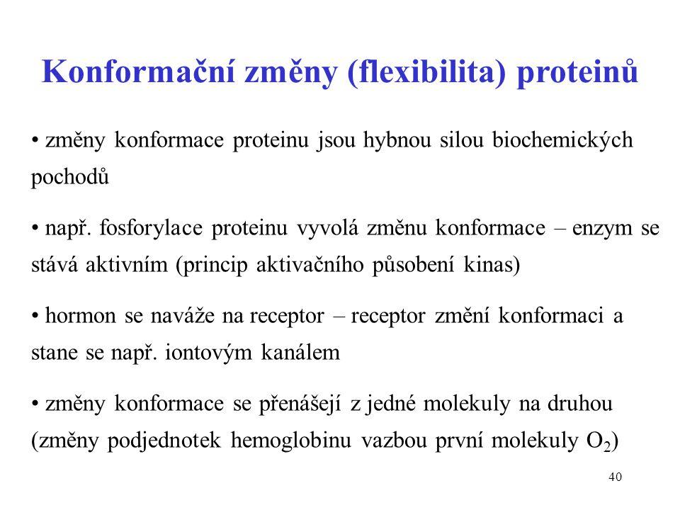 Konformační změny (flexibilita) proteinů