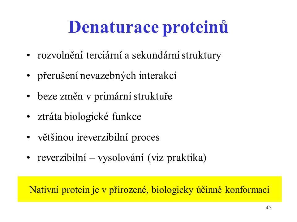 Nativní protein je v přirozené, biologicky účinné konformaci