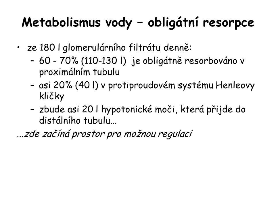 Metabolismus vody – obligátní resorpce