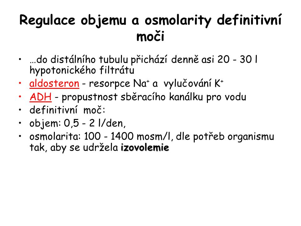 Regulace objemu a osmolarity definitivní moči