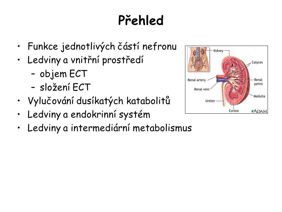 Přehled Funkce jednotlivých částí nefronu Ledviny a vnitřní prostředí
