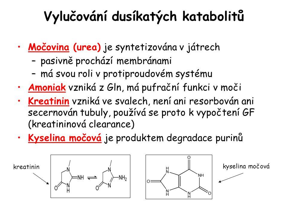 Vylučování dusíkatých katabolitů