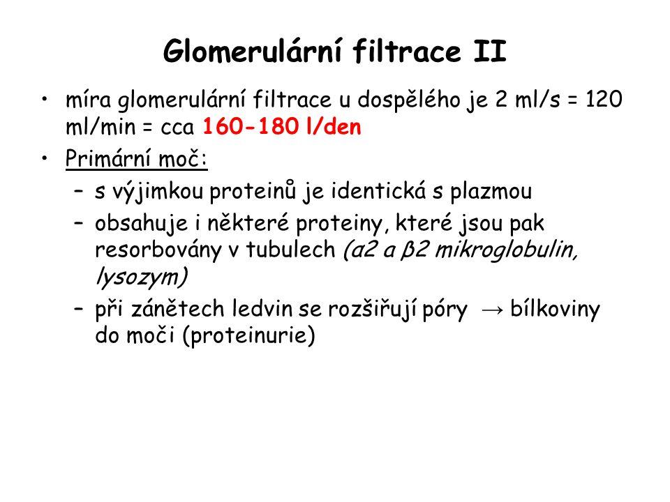 Glomerulární filtrace II