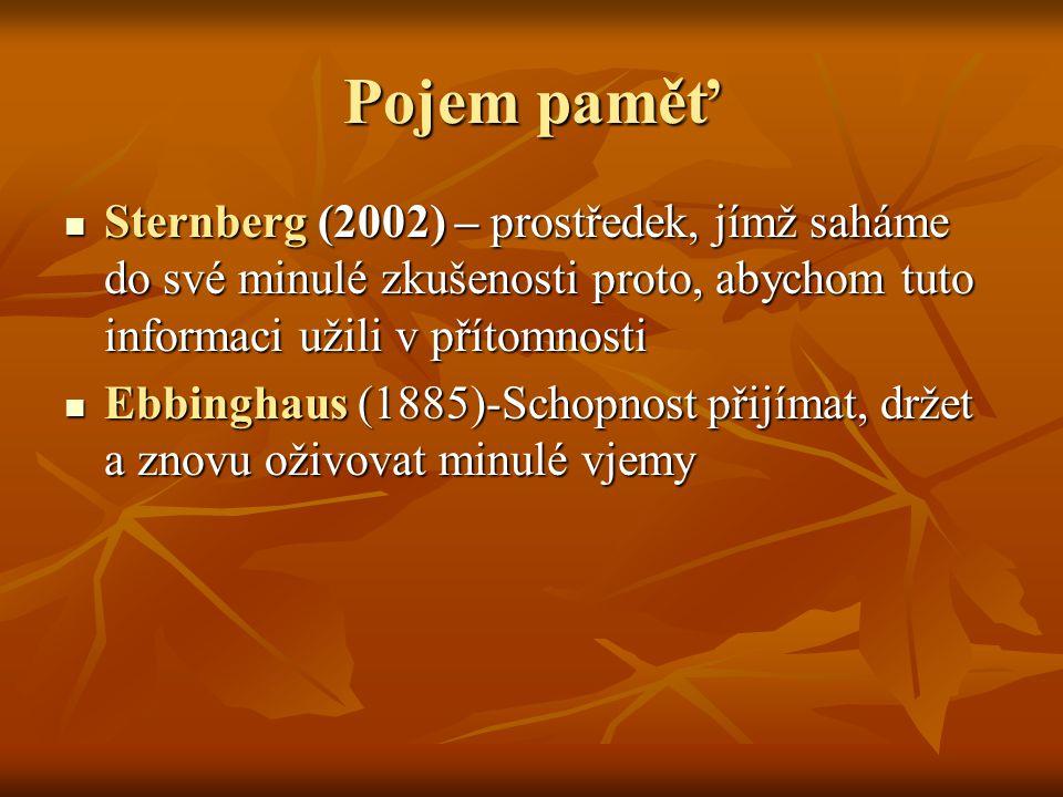 Pojem paměť Sternberg (2002) – prostředek, jímž saháme do své minulé zkušenosti proto, abychom tuto informaci užili v přítomnosti.