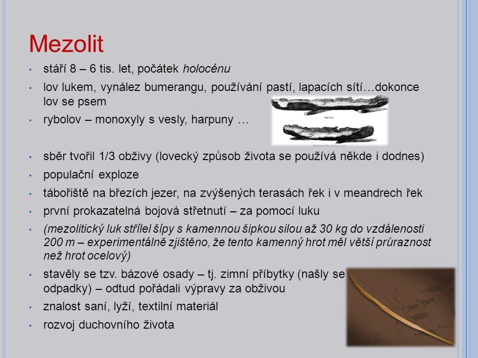 Mezolit stáří 8 – 6 tis. let, počátek holocénu