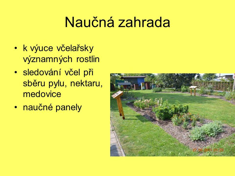 Naučná zahrada k výuce včelařsky významných rostlin