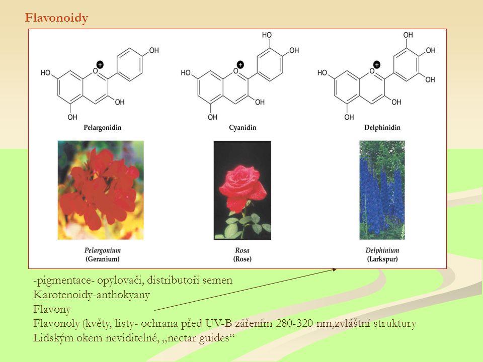 Flavonoidy -pigmentace- opylovači, distributoři semen