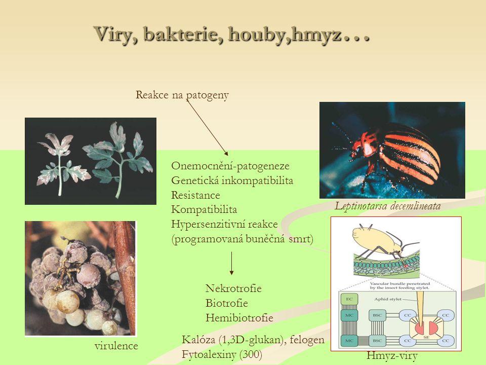 Viry, bakterie, houby,hmyz…