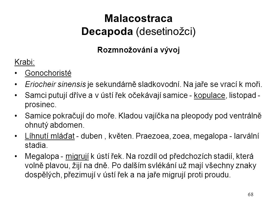Decapoda (desetinožci)