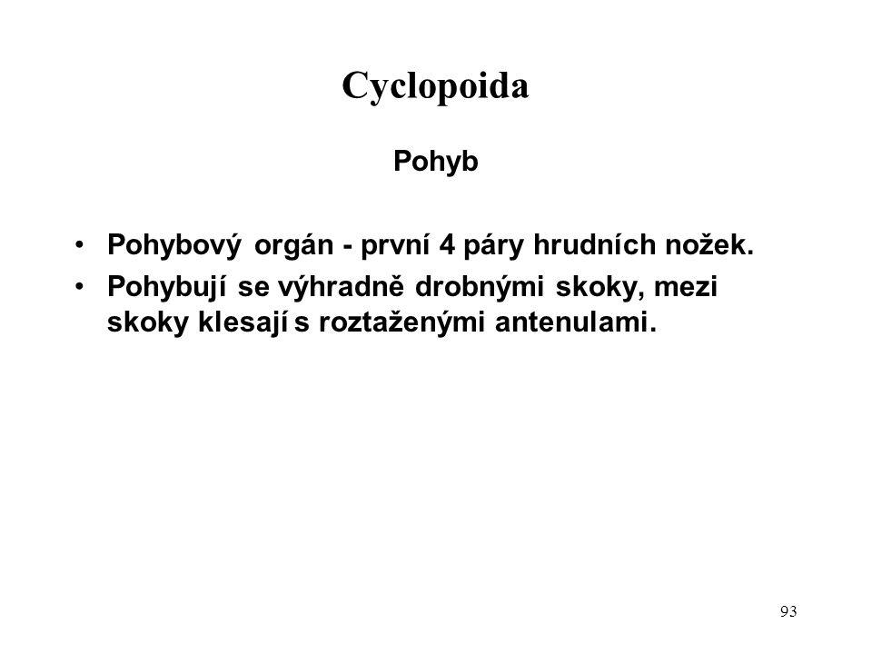 Cyclopoida Pohyb Pohybový orgán - první 4 páry hrudních nožek.