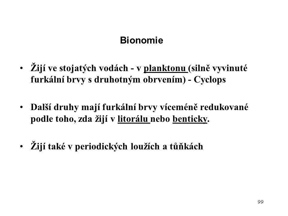 Bionomie Žijí ve stojatých vodách - v planktonu (silně vyvinuté furkální brvy s druhotným obrvením) - Cyclops.