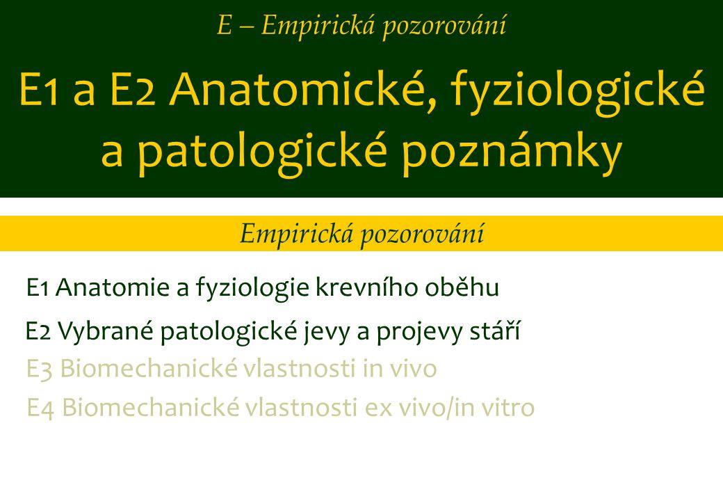 E1 a E2 Anatomické, fyziologické a patologické poznámky