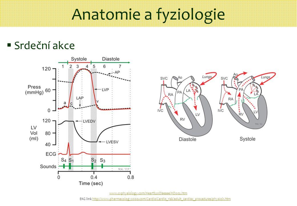Anatomie a fyziologie Srdeční akce