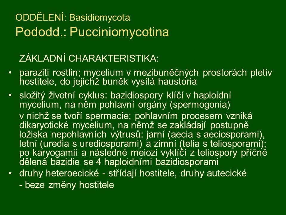 ODDĚLENÍ: Basidiomycota Pododd.: Pucciniomycotina