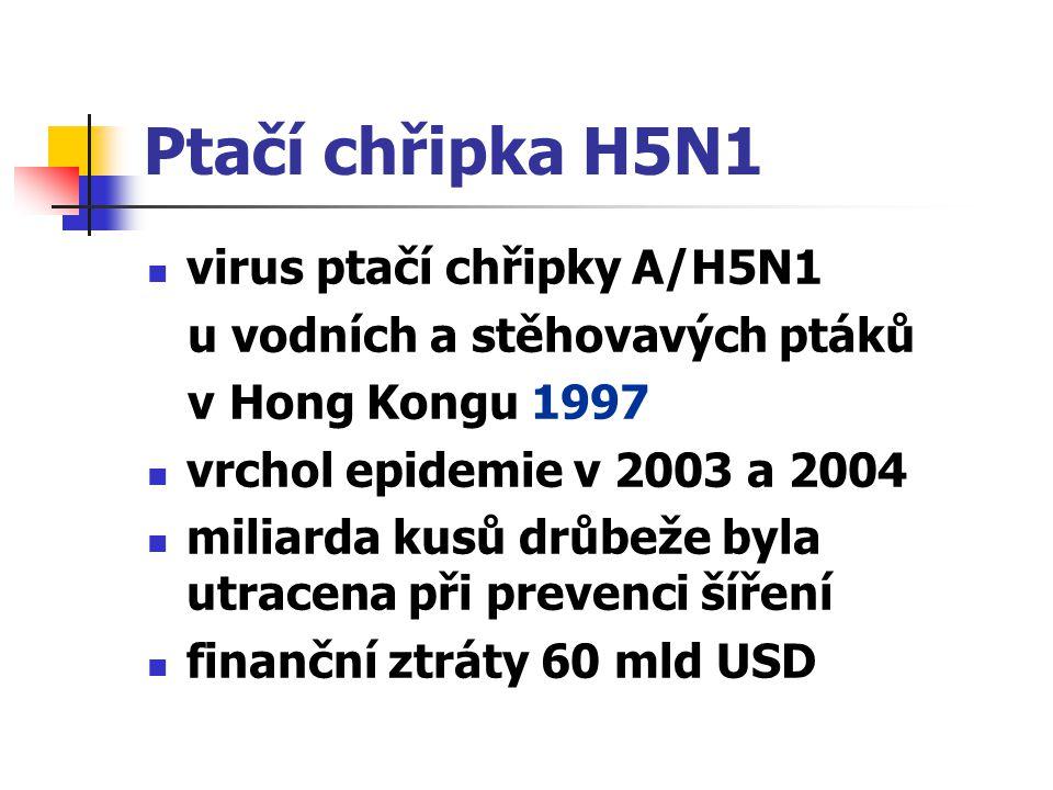 Ptačí chřipka H5N1 virus ptačí chřipky A/H5N1