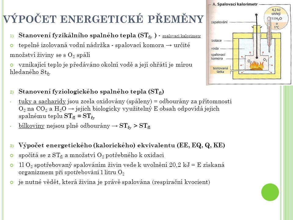 VÝPOČET ENERGETICKÉ PŘEMĚNY
