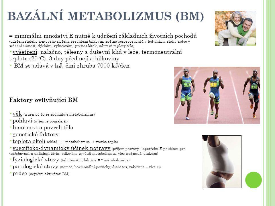 BAZÁLNÍ METABOLIZMUS (BM)