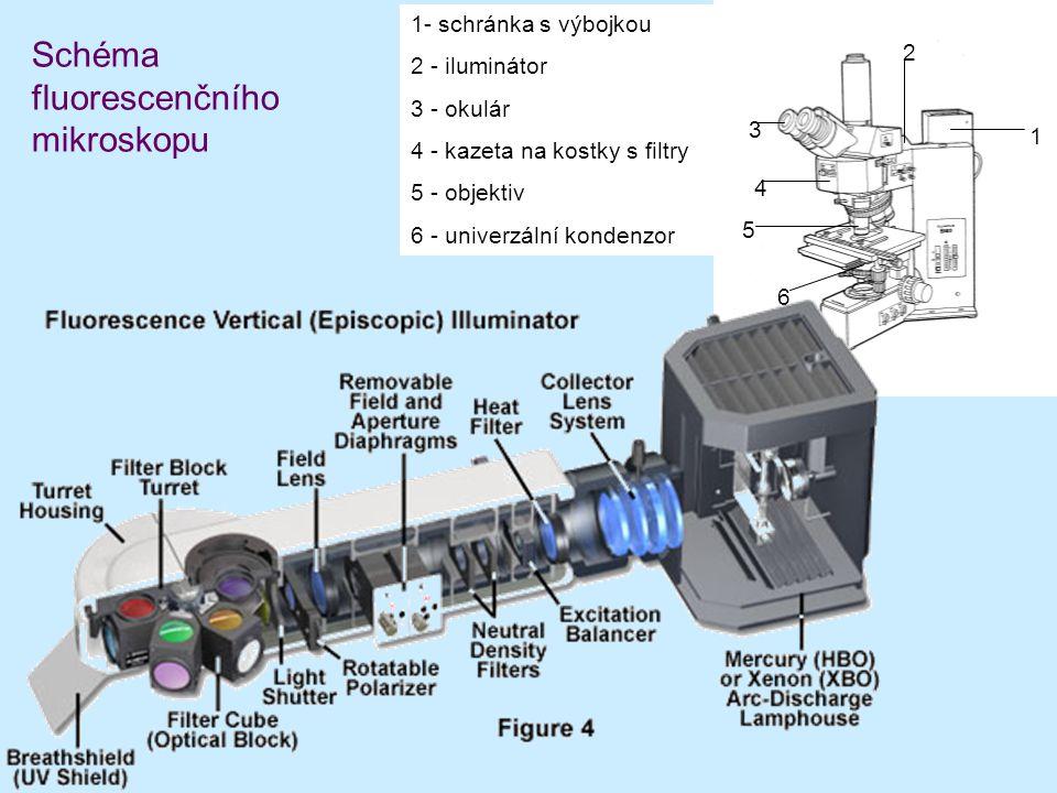 Schéma fluorescenčního mikroskopu