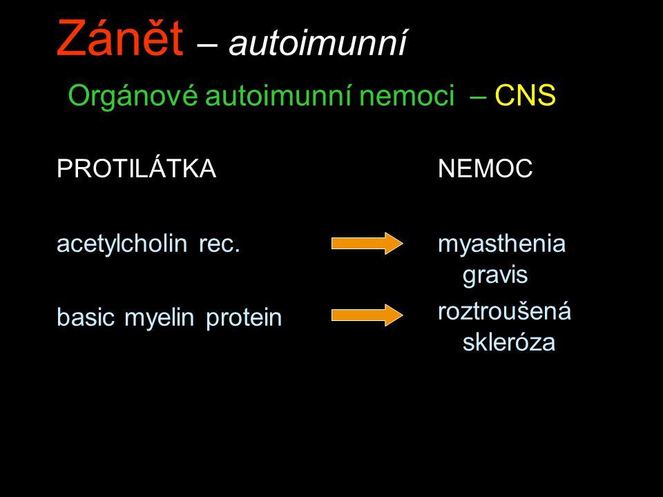 Zánět – autoimunní Orgánové autoimunní nemoci – CNS