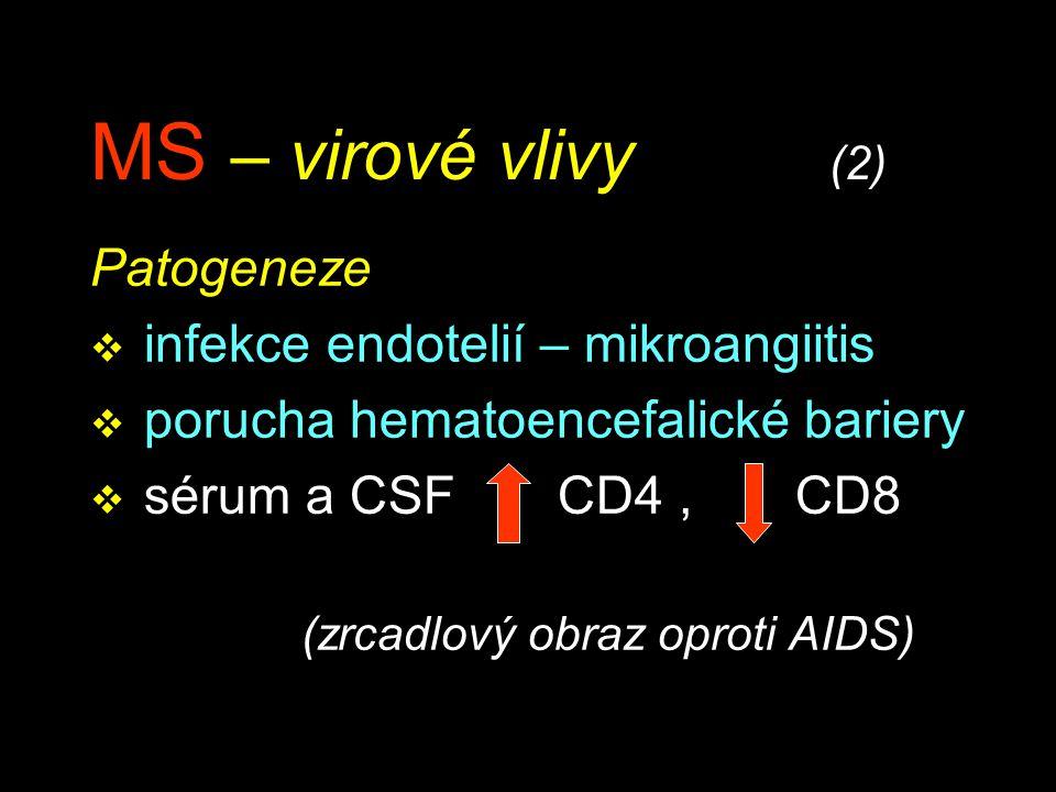 MS – virové vlivy (2) Patogeneze infekce endotelií – mikroangiitis