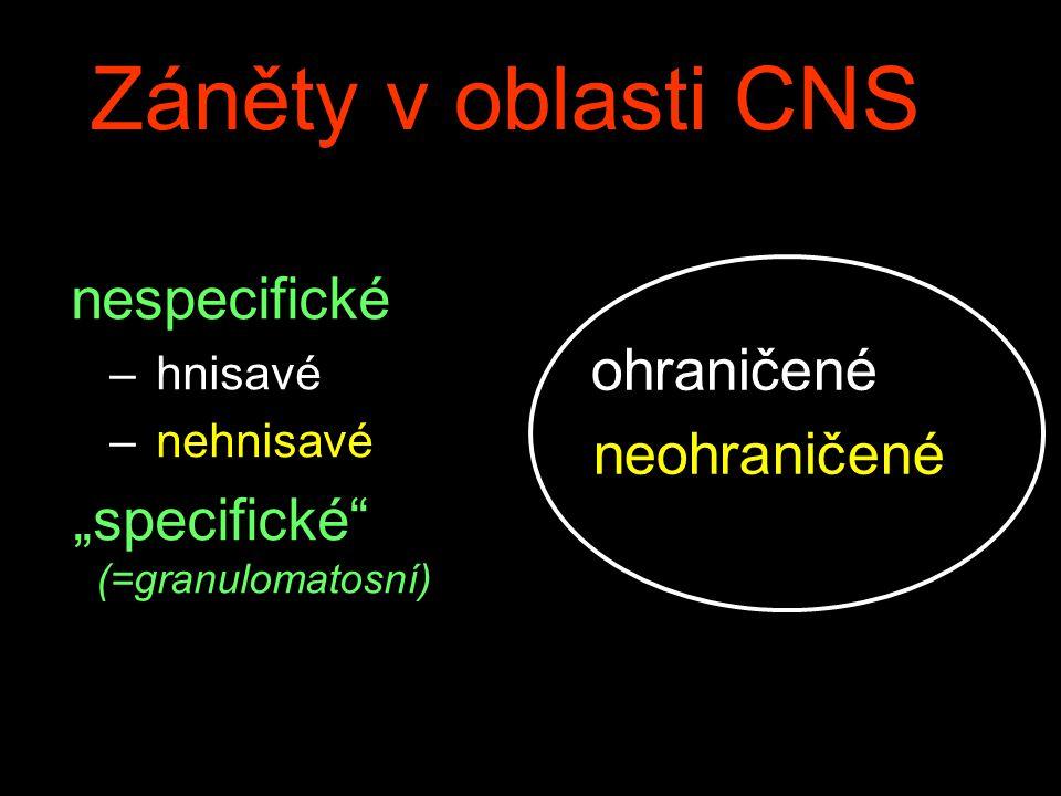 Záněty v oblasti CNS nespecifické ohraničené