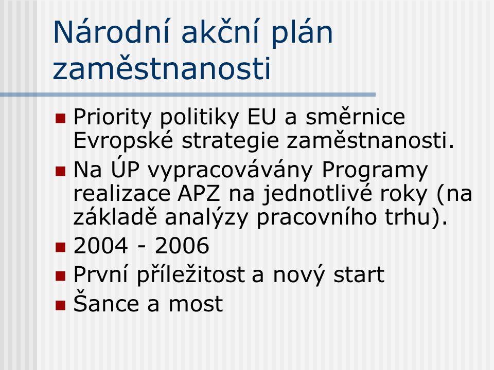 Národní akční plán zaměstnanosti