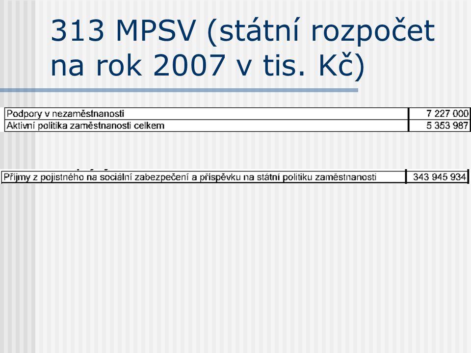 313 MPSV (státní rozpočet na rok 2007 v tis. Kč)