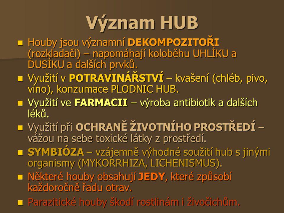 Význam HUB Houby jsou významní DEKOMPOZITOŘI (rozkladači) – napomáhají koloběhu UHLÍKU a DUSÍKU a dalších prvků.