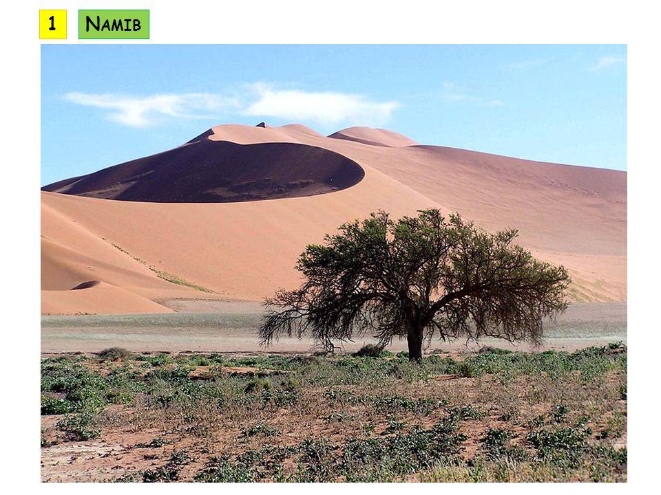 1 Namib