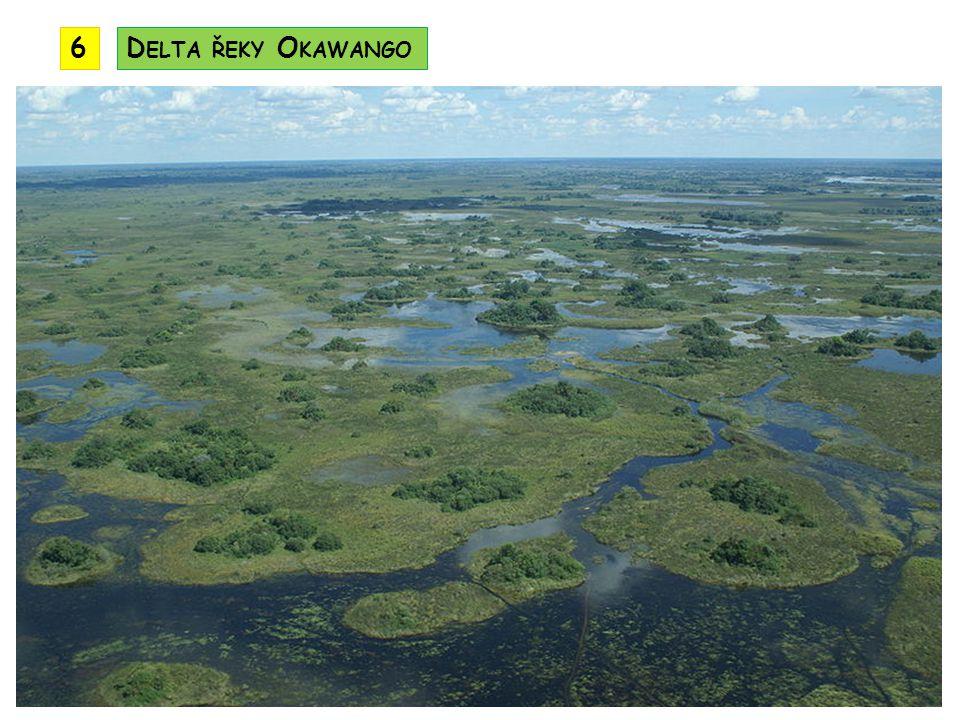 6 Delta řeky Okawango