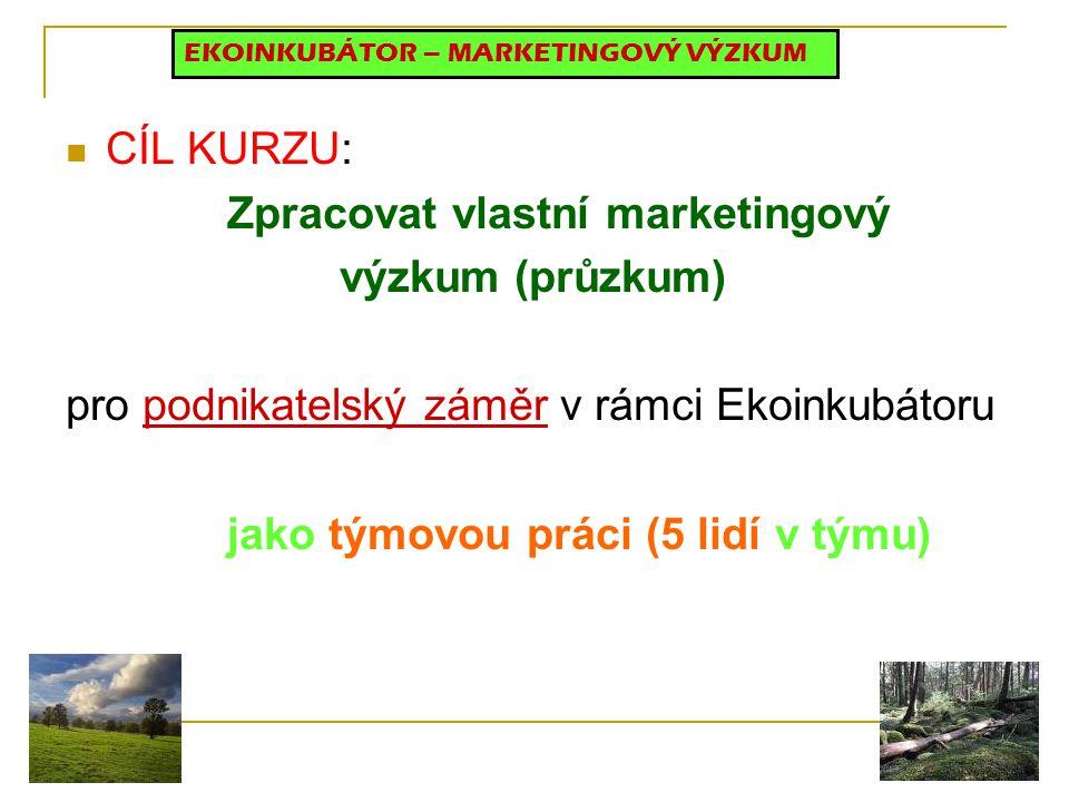 Zpracovat vlastní marketingový výzkum (průzkum)