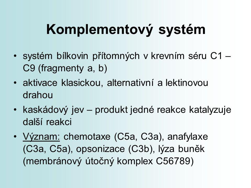 Komplementový systém systém bílkovin přítomných v krevním séru C1 – C9 (fragmenty a, b) aktivace klasickou, alternativní a lektinovou drahou.